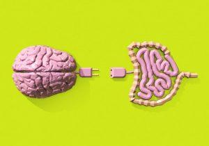 nuestro-intestino-segundo-cerebro-intestino