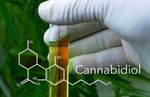 cannabidiol-cbd oil-aceite de cbd