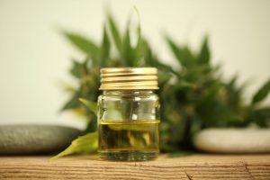 cbd- hemp extract- aceite de cáñamoe canamo- aceite de semilla de cáñamo- aceite de marihuana