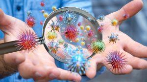 Consejos-Para-Fortalecer-El-Sistema-Inmunitario