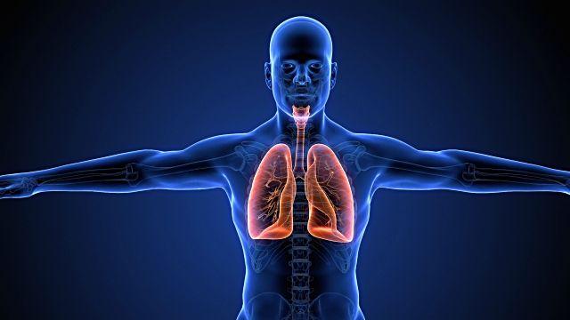 Respiracion,respirarmejor,comorespiararmejor,mejorarrespiracion,covid19