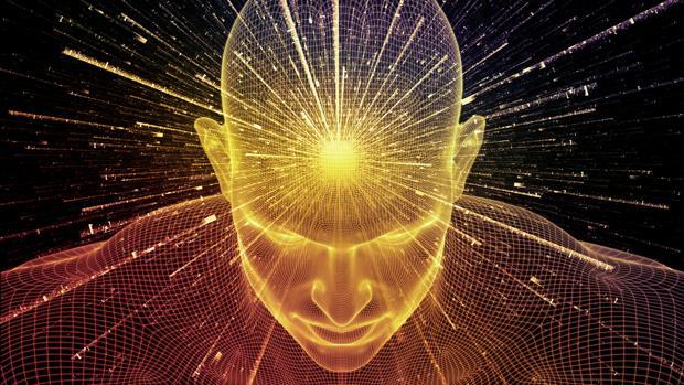 cerebro y meditacion